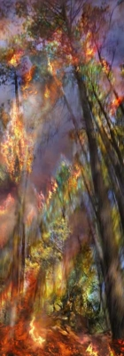 Incendie 05