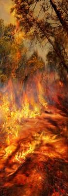 Incendie 10