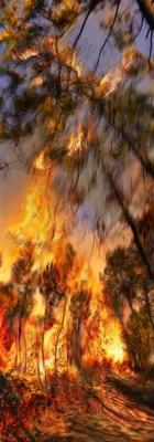 Incendie 11