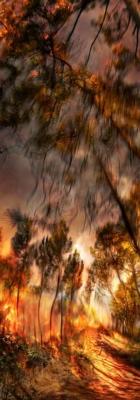 Incendie 12