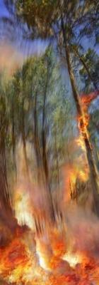 Incendie 18