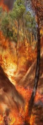 Incendie 20