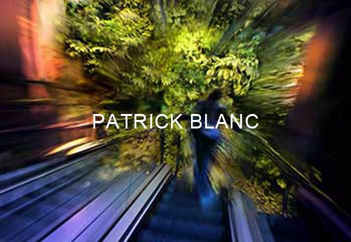 Série Patrick Blanc Titre EN
